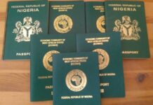 Immigration suspends issuance of new passports