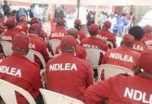 Sensitize, Create Opportunities For Youths, NDLEA Charges Maritime Stakeholders Against Drug Abuse